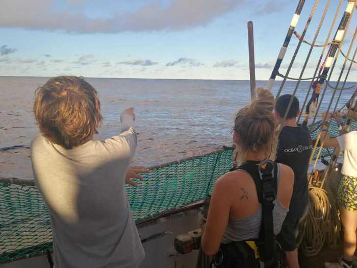 Schüler beim Whalewatching