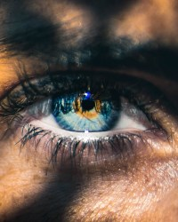 Oeil Eugénie1