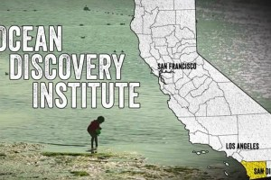 May 2015 – Ocean Discovery Institute featured in KCET documentary series