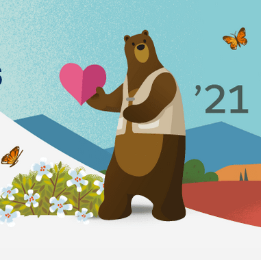 Salesforce Spring 21 image