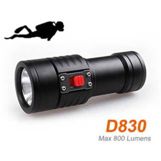 dive light 800 lumens
