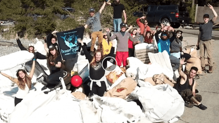 thornby island cleanup video