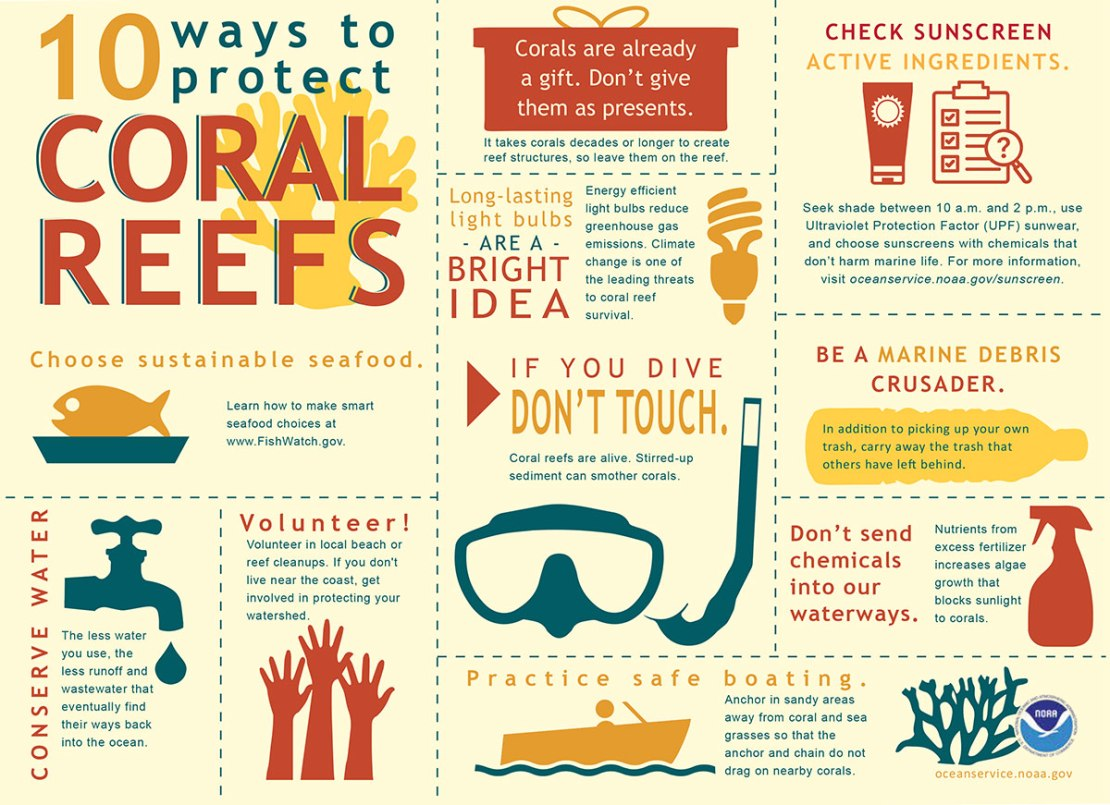 Infographic on protecting coral reefs