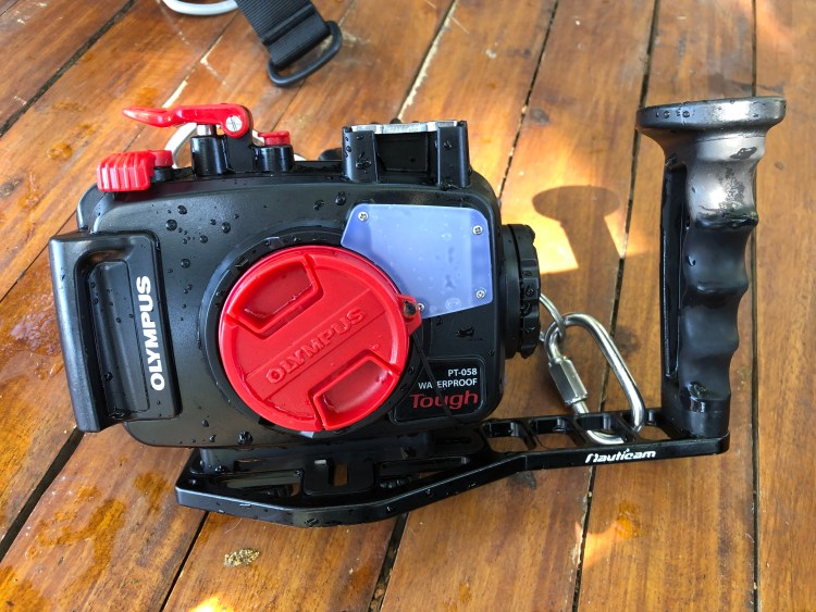 Getting started with underwater photography: you will need an underwater housing for your camera.