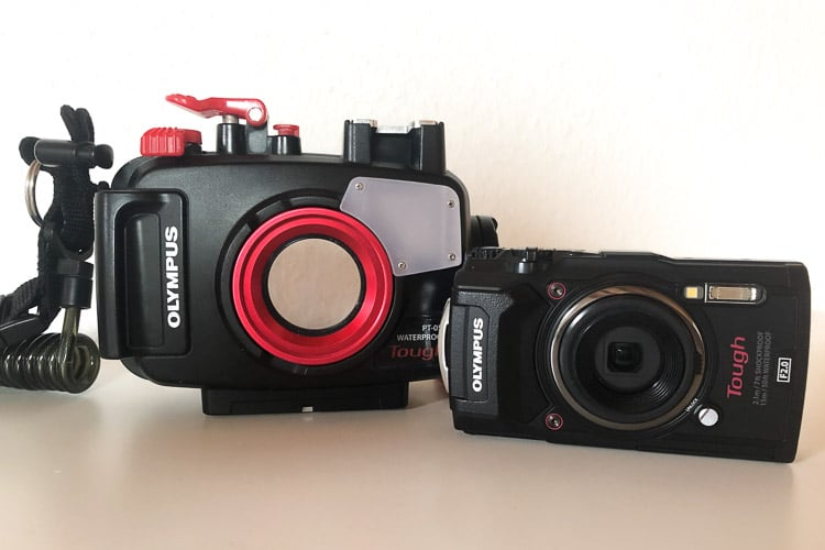 The Olympus TG-6 is a great compact camera to get started with underwater photography