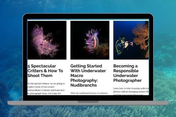 Underwater Photography Webinar Series