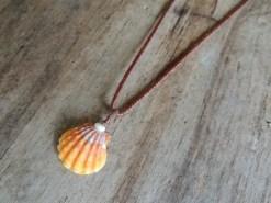 Ocean Tuff Jewelry - Sunrise Shell Pendant Necklace