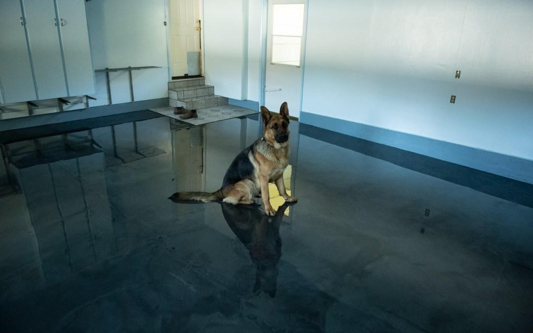 Reflector enhanced epoxy garage floor.