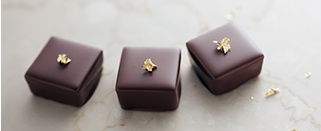 btn_main_chocolate_on