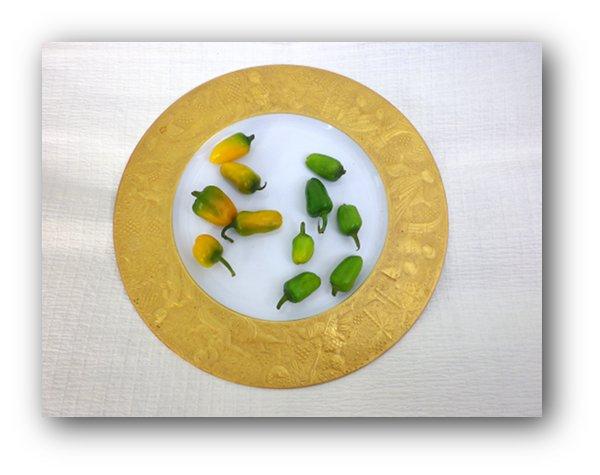 rosenthalpapurika