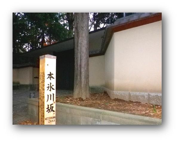 151212motohikawayoru