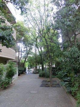 yakuenzakaryokuti