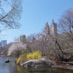 Central Park New York / FT Anahi Moretti