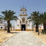 Finca Isla Mínima en Isla Mayor, La Puebla del Río. Sevilla