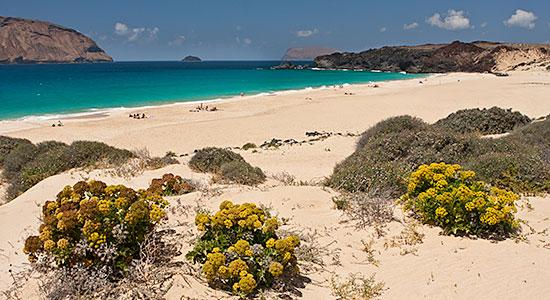 Playa de Las Conchas en La Graciosa, Lanzarote