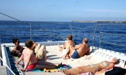 Marine Excursion Puerto Calero-Papagayo, Catlanza, Puerto Calero, Lanzarote