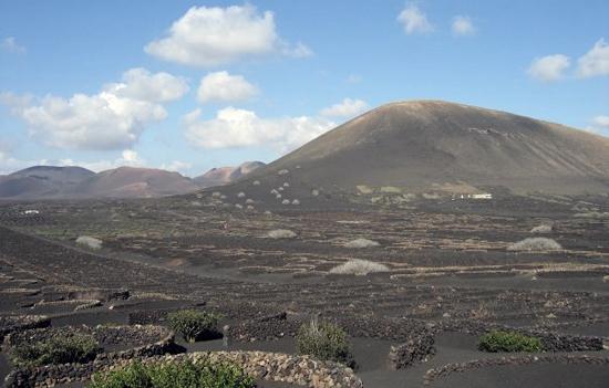 La Geria y Timanfaya, ruta del vino, Bodegas El Grifo, Lanzarote