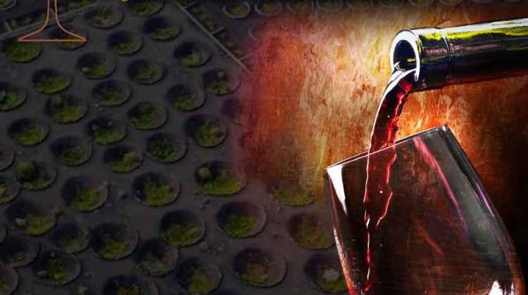 Abierto el plazo de inscripción para el XVII Concurso Insular de Cata de Vinos Artesanales (Hasta el 01 de marzo)