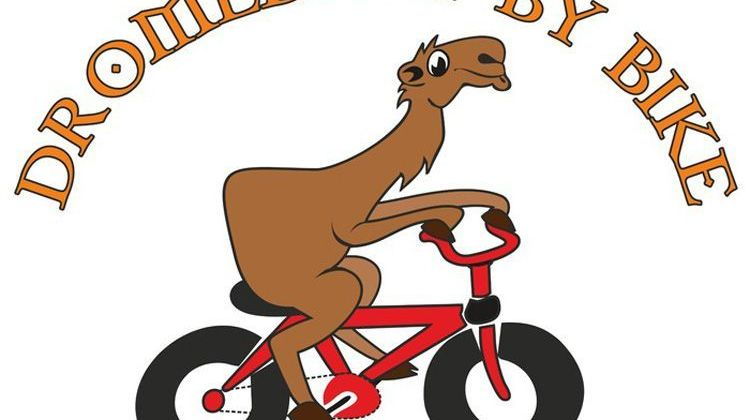 Dromedary by Bike, rental, guided bike excursions and hiking trips
