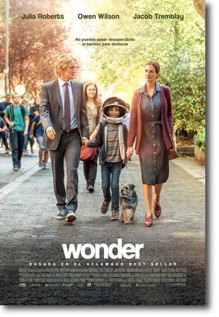cines lanzarote Wonder