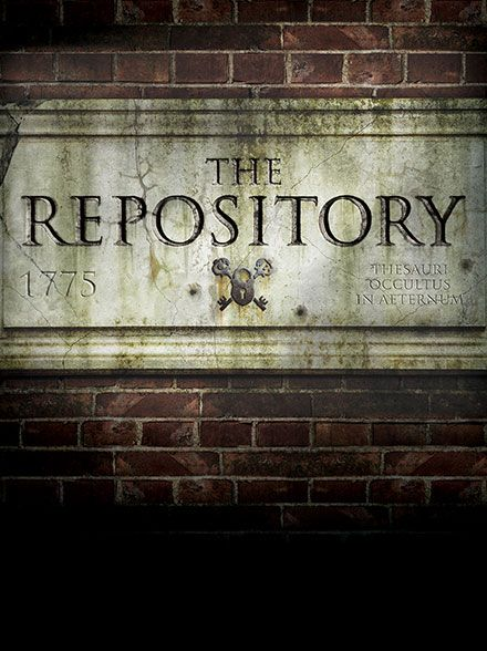 repository_graphic