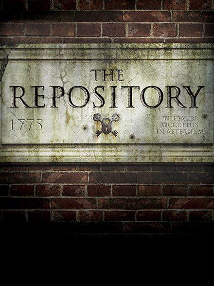 repository_graphic