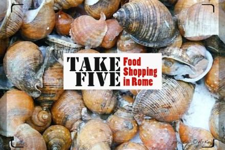 01 lP1030285_sea-snails_cov_ock