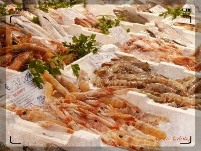 The New Esquilino Market – Seafood Stalls... Food Shopping in Rome | photo: ©ArKey