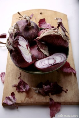 1120_red-onions_ockstyle_©luciazeccara