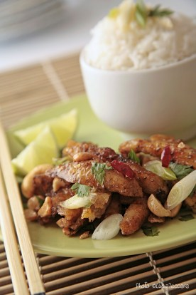 Asian Inspired :: Stir Fried Chicken and Rice | Recipe and Styling: Orsola Ciriello Kogan | Photo ©LuciaZeccara