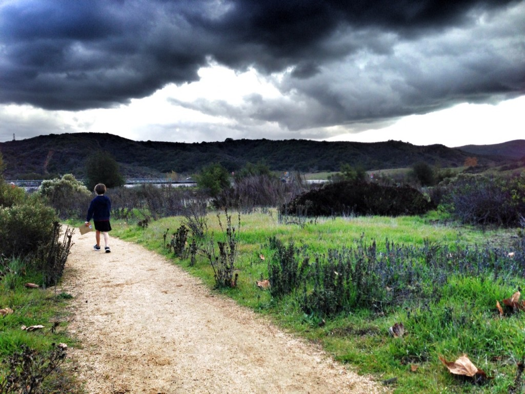 NIX Nature Trail in Laguna Beach