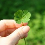 Family-Friendly St. Patrick's Day Events in Orange County