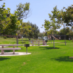 Guide to Bonita Canyon Sports Park in Newport Beach