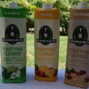 3 Day Detox with the Sambazon Cleanse