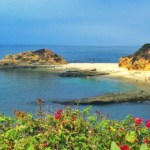 Guide to Goff Cove Beach in Laguna Beach