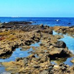 Guide to Visiting Orange County's Blow Hole