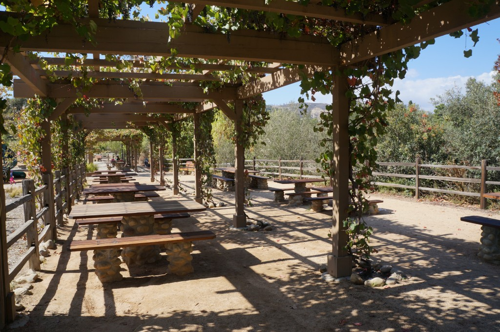 Picnic Tables at Los Rios Park
