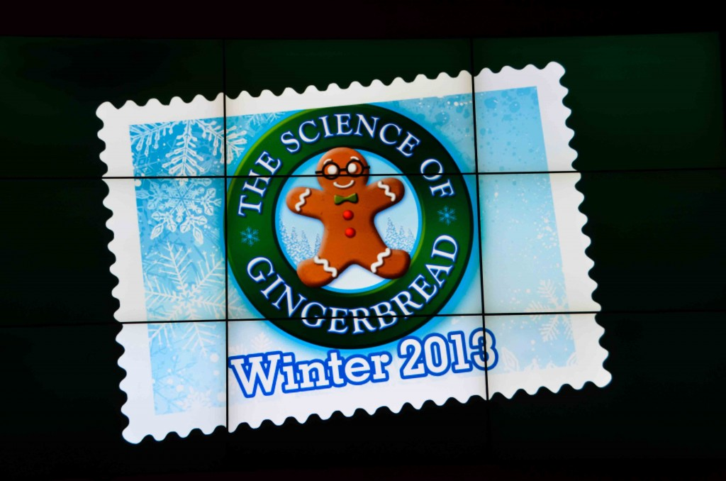 Discovery-Science-Center-Gingerbread-16