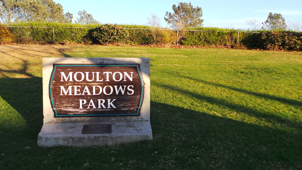 moulton-meadows-laguna-beach-18
