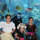 Aquarium of the Pacific 9th Annual International Children's Day Festival