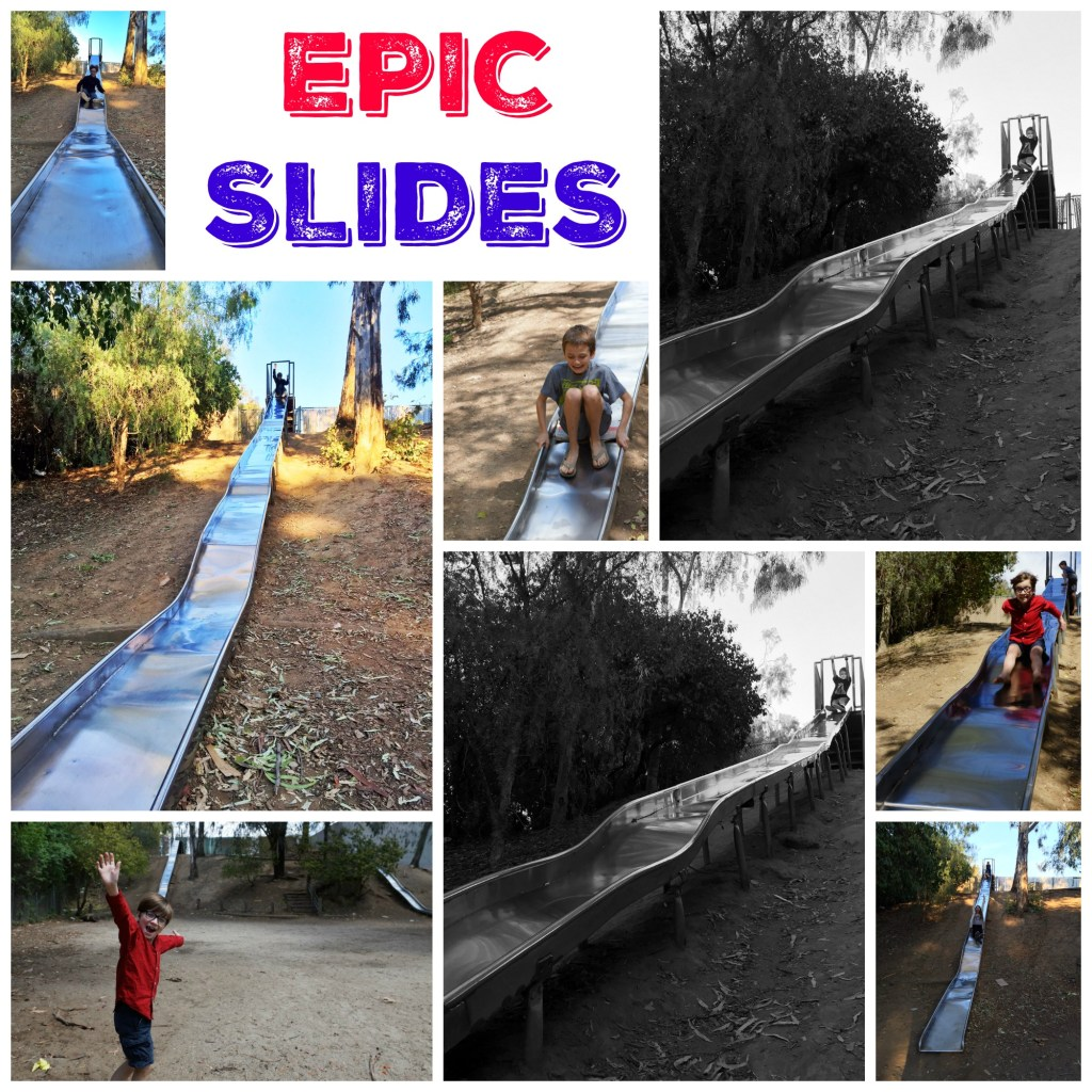 Epic Slides in Santa Ana