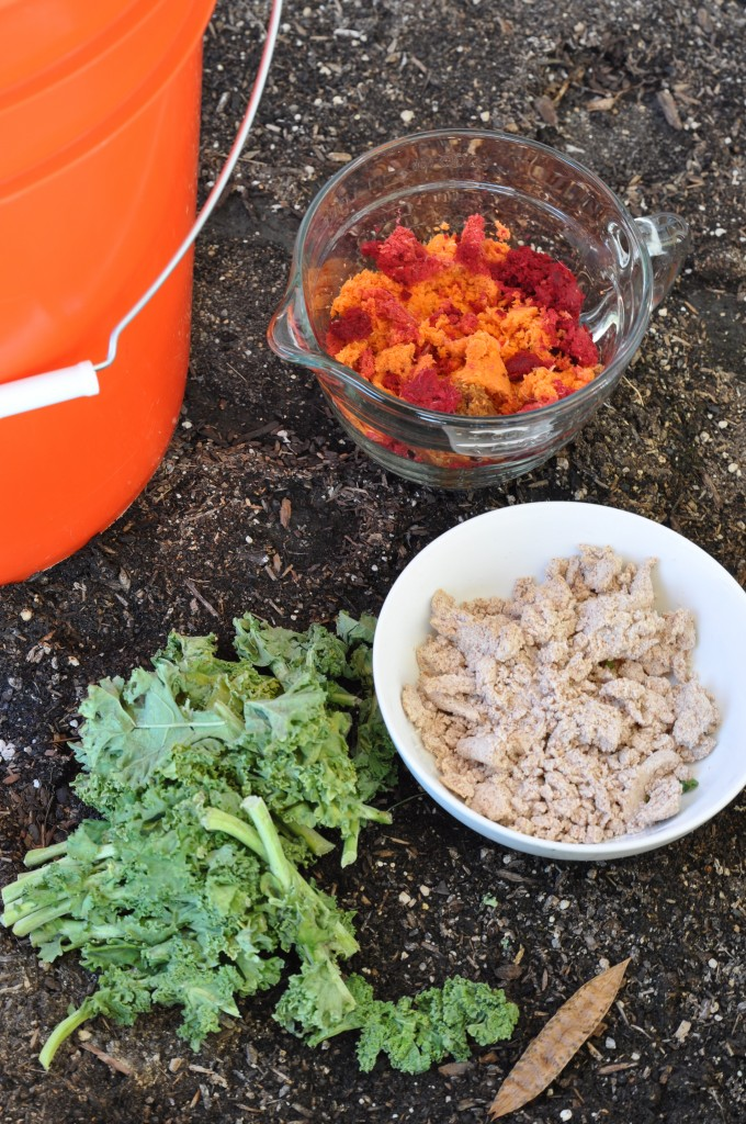 how-to-compost-2