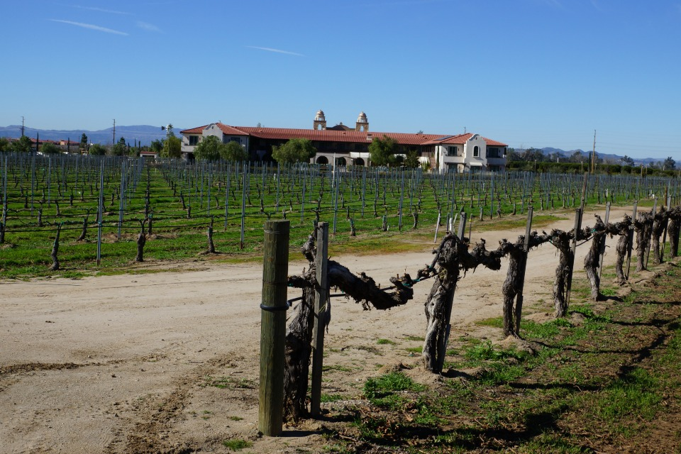 Ponte Vineyards in Temecula
