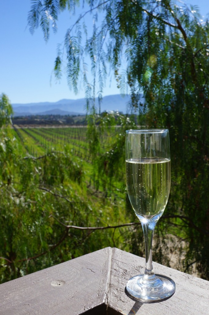 Champagne in a vineyard in Temecula Wine Country