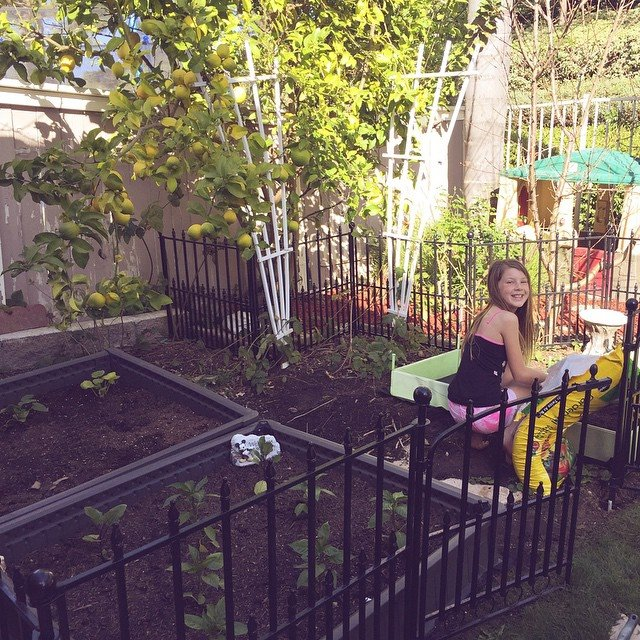 Awesome Starting A Backyard Garden Is Easier Than Many People Think. This Month Is  The Perfect Month To Get Started Planting For A Summer Harvest.