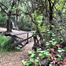Guide to Visiting the Oak Canyon Nature Center in Anaheim