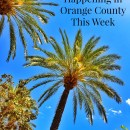 Events Happening in Orange County This Week: May 11-17th