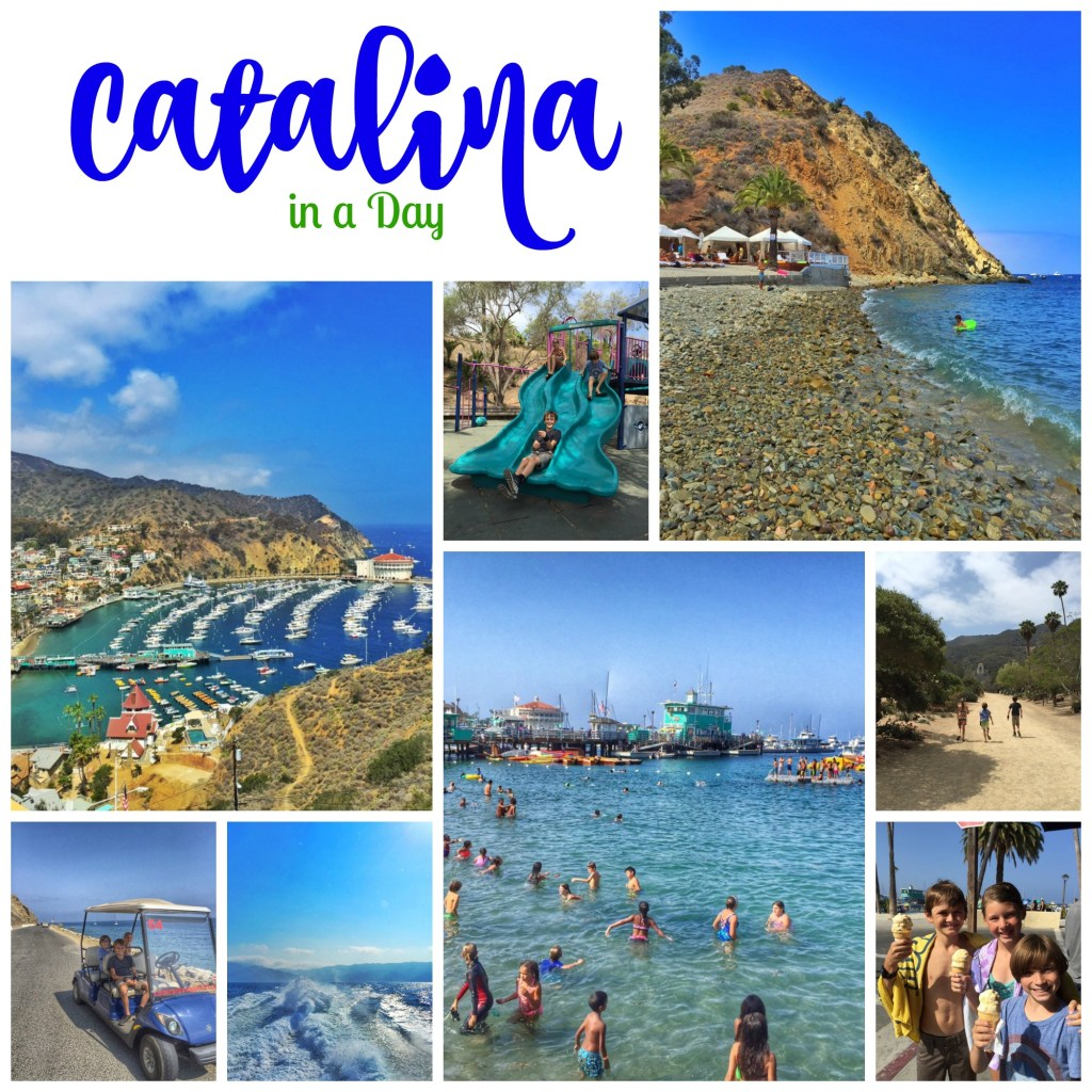Catalina in a Day