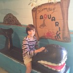 Visiting the Morro Bay Aquarium