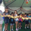 Tween Guide to going to the OC Fair
